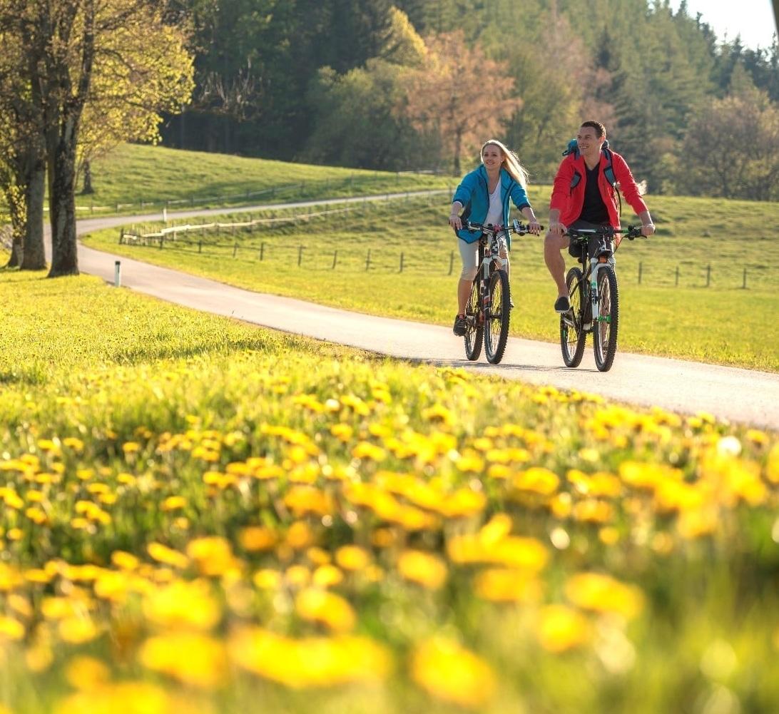 Weizer Almenland Radtour im Sommer