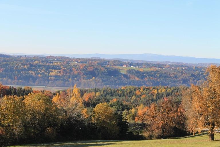 Breiteggerweg Herbst