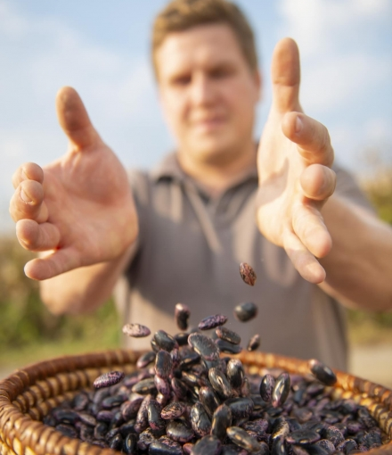 Käferbohne im Korb mit Bauer