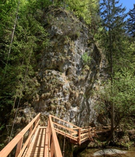 Brücke in der Großen Raabklamm