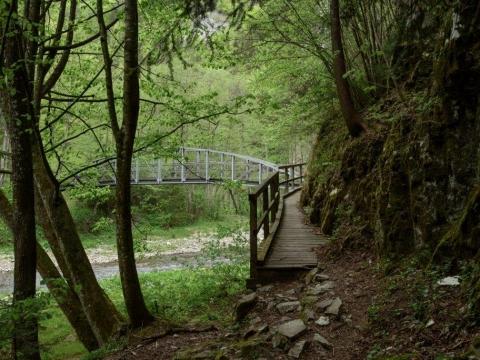 Raabklamm Wanderung über Stege und Brücken