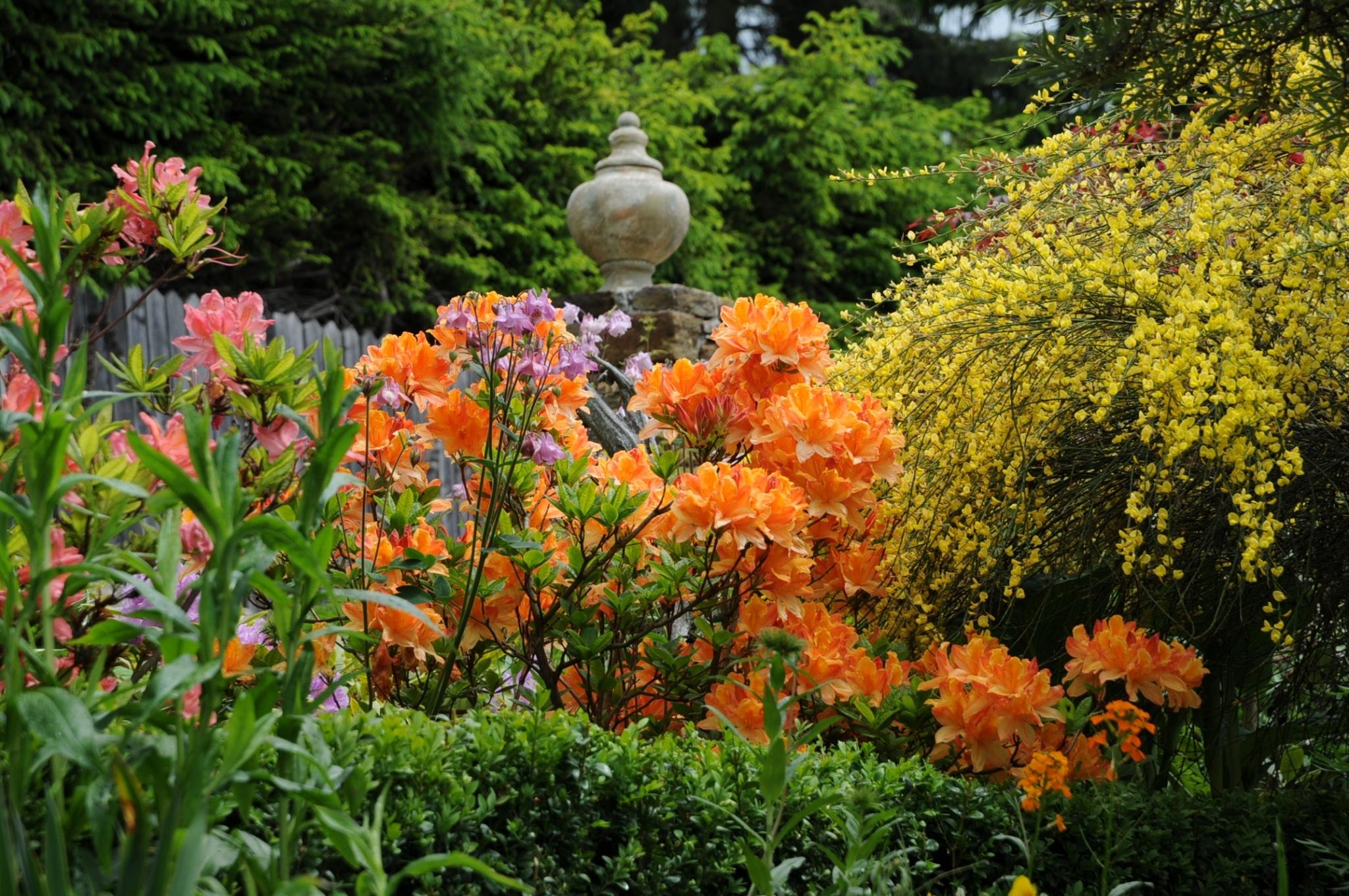 8. Sulamith Garten, Schaugarten
