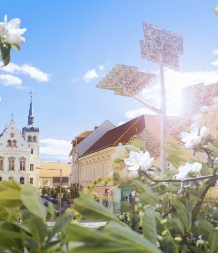 Gleisdorf Frühling Solarbaum