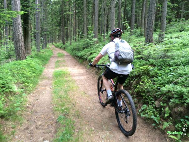 Mountainbike Feldweg