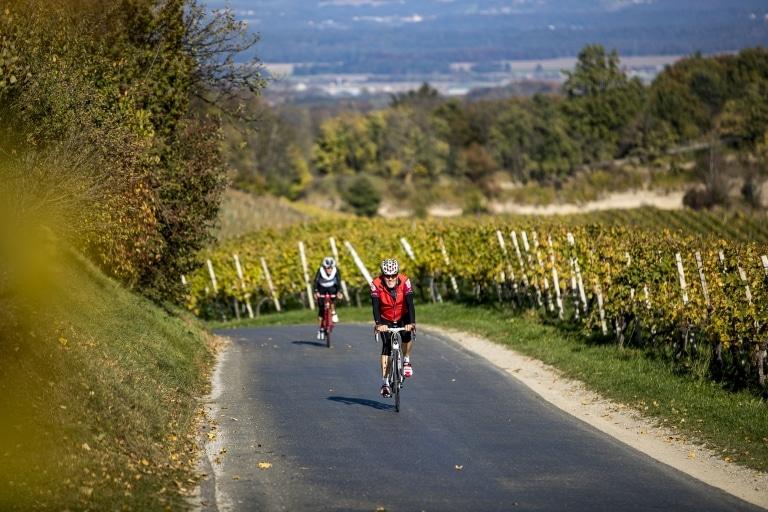 Radfahren auf der Weinland Steiermark Radtour, Sernauberg