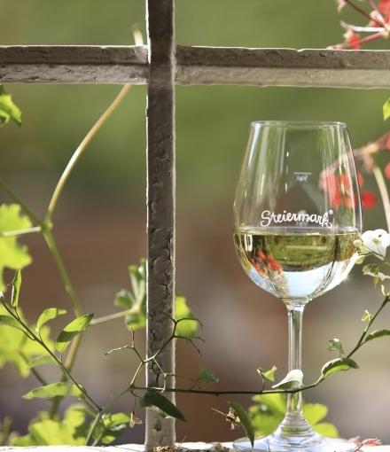 Weinglas Steiermark