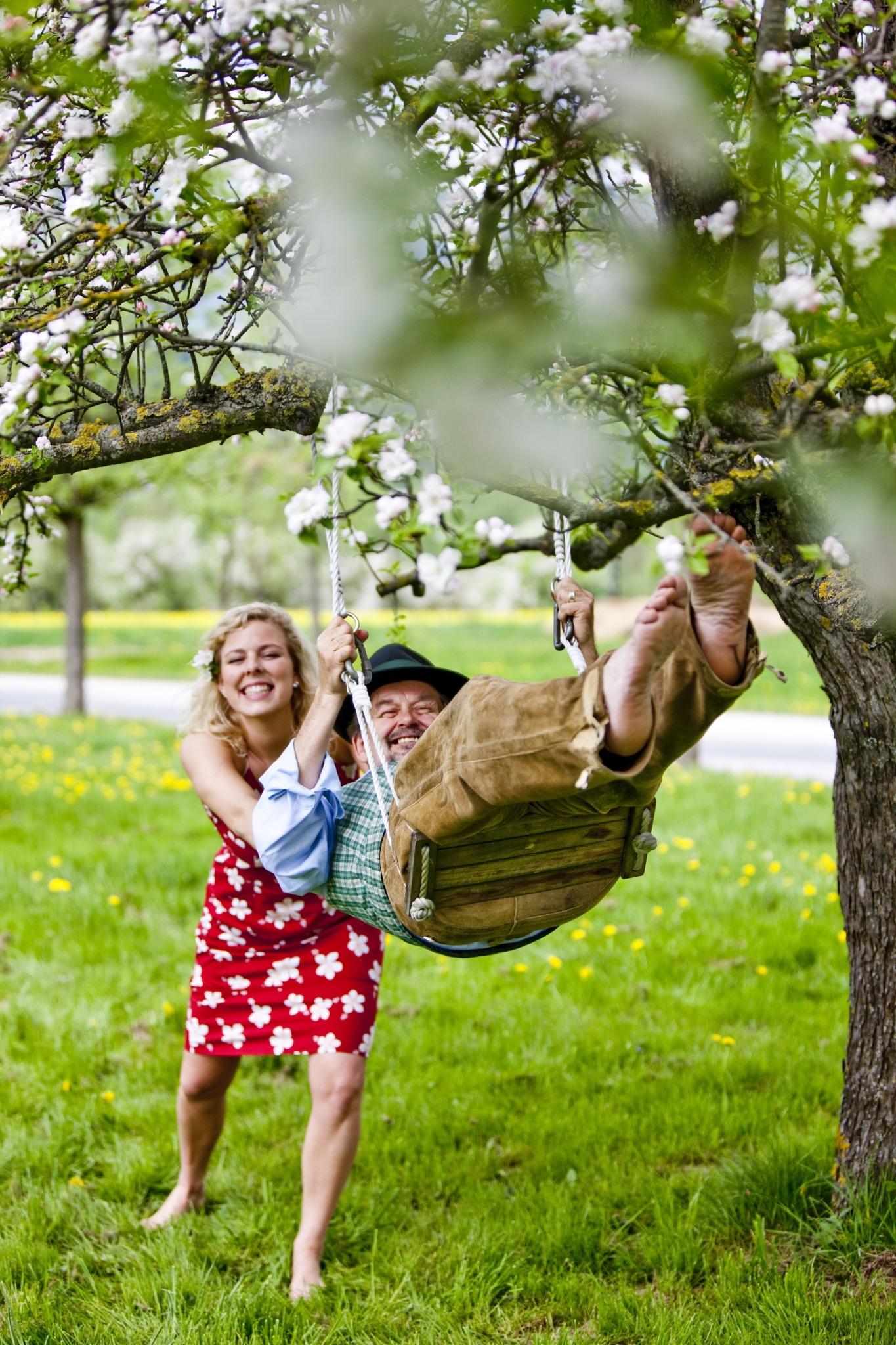 Apfelblüte in der Oststeiermark