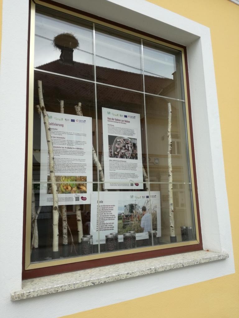 Käferbohnenfenster 3 Herwig´s Cafe Central