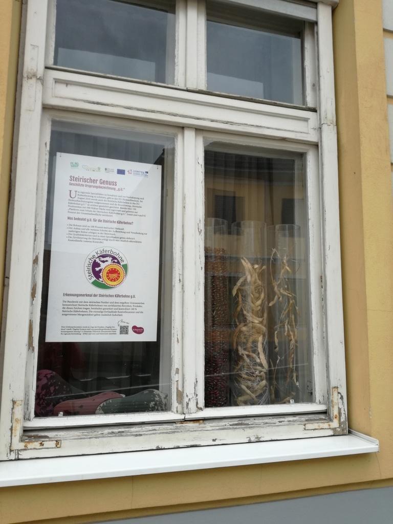 Käferbohnenfenster 4