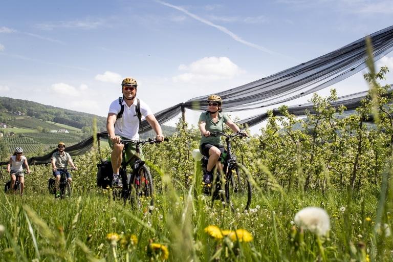 Radfahren im Frühling: zwischen Apfelblüten auf der Weinland Steiermark Radtour nahe Puch. Oststeiermark