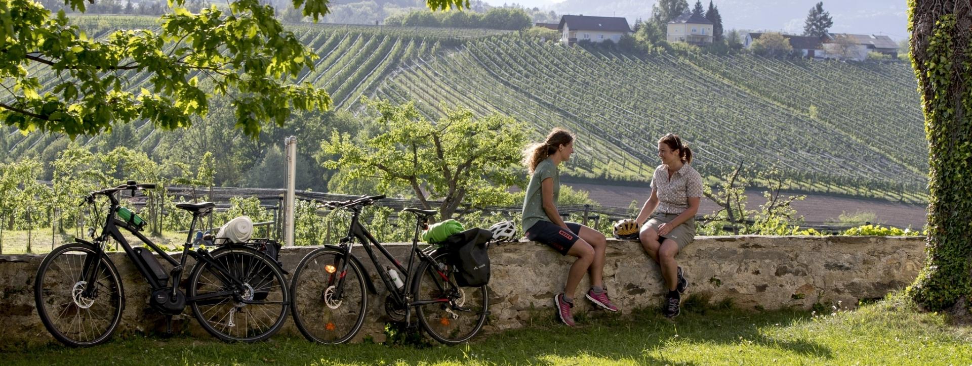 Weinland Steiermark Radtour, Oststeiermark (c) Steiermark Tourismus_Tom Lamm