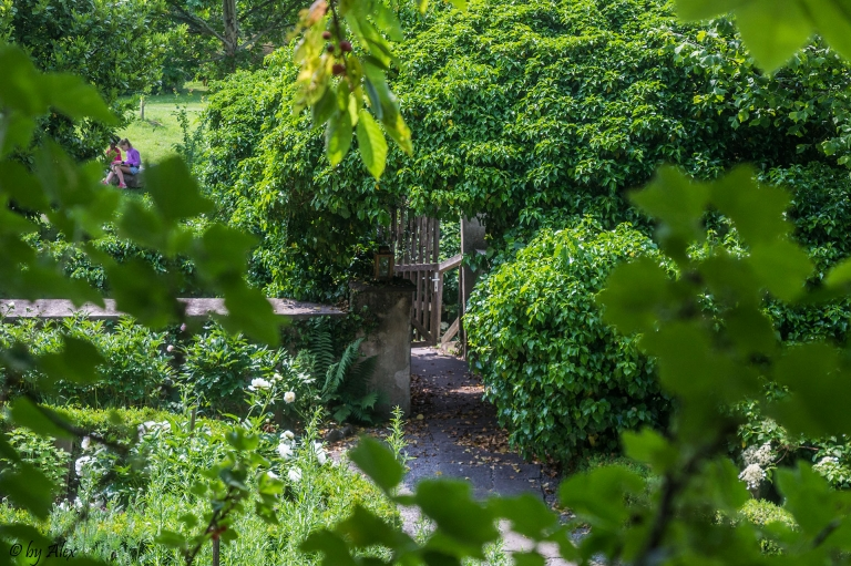 Kräutergarten am Weizberg
