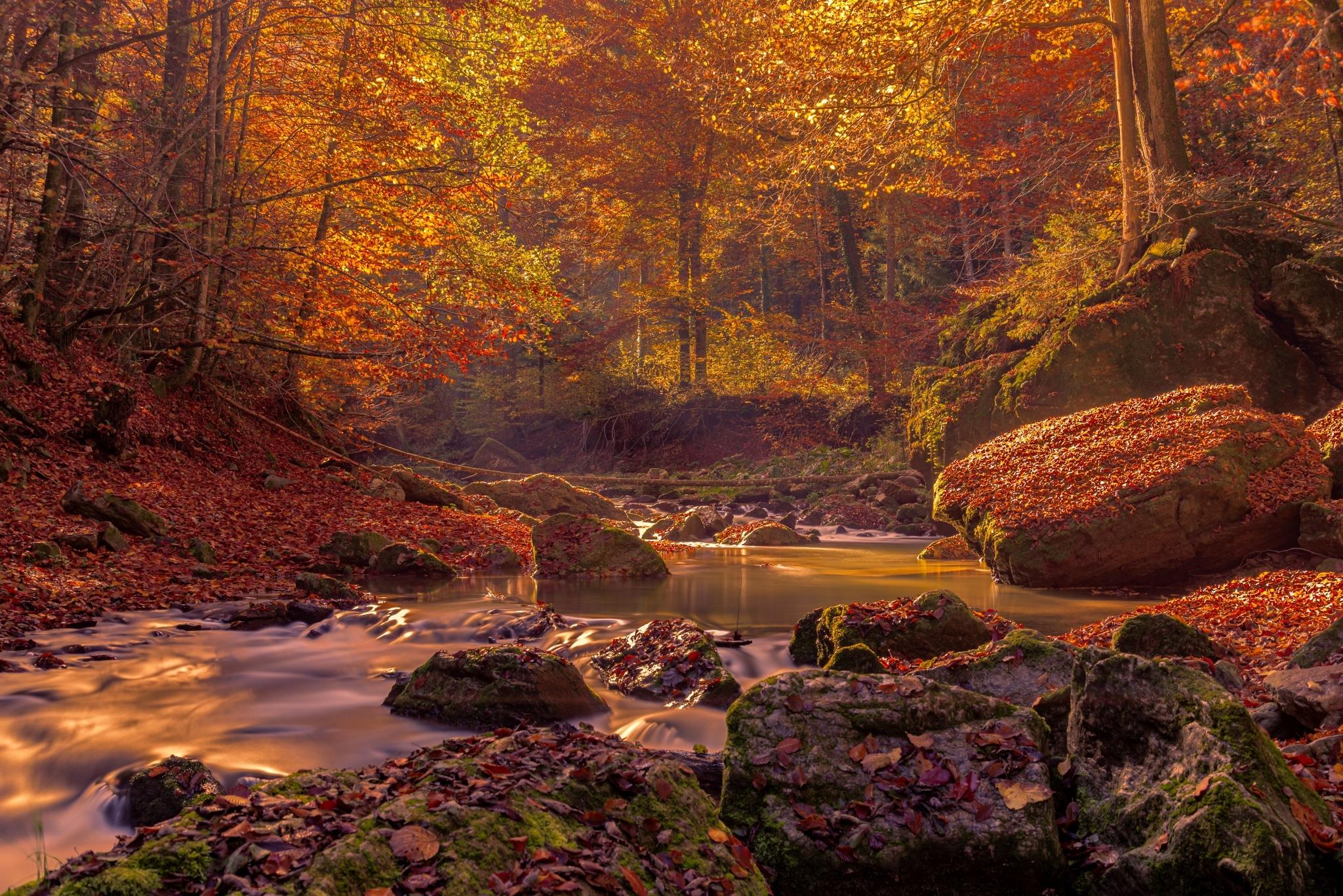 Die Raabklamm zeigt sich von einer seiner schönsten Seiten im Herbst
