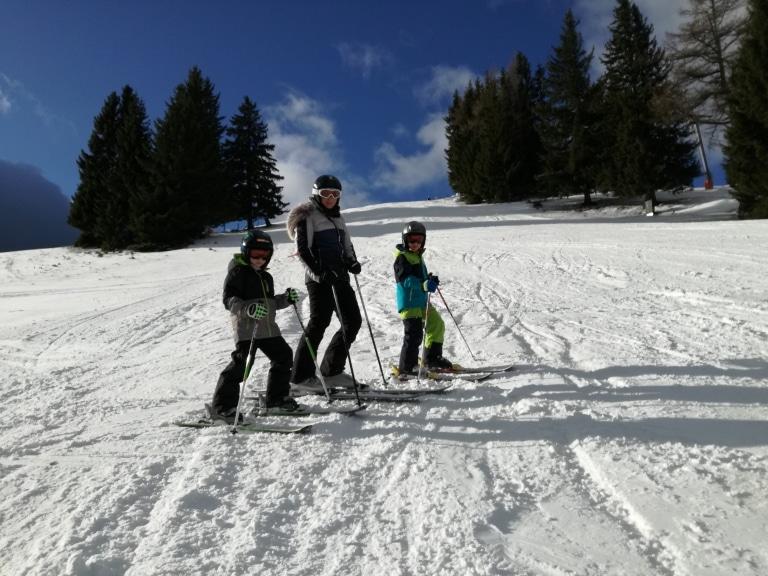 Sie sehen ein Foto vom Skifahren