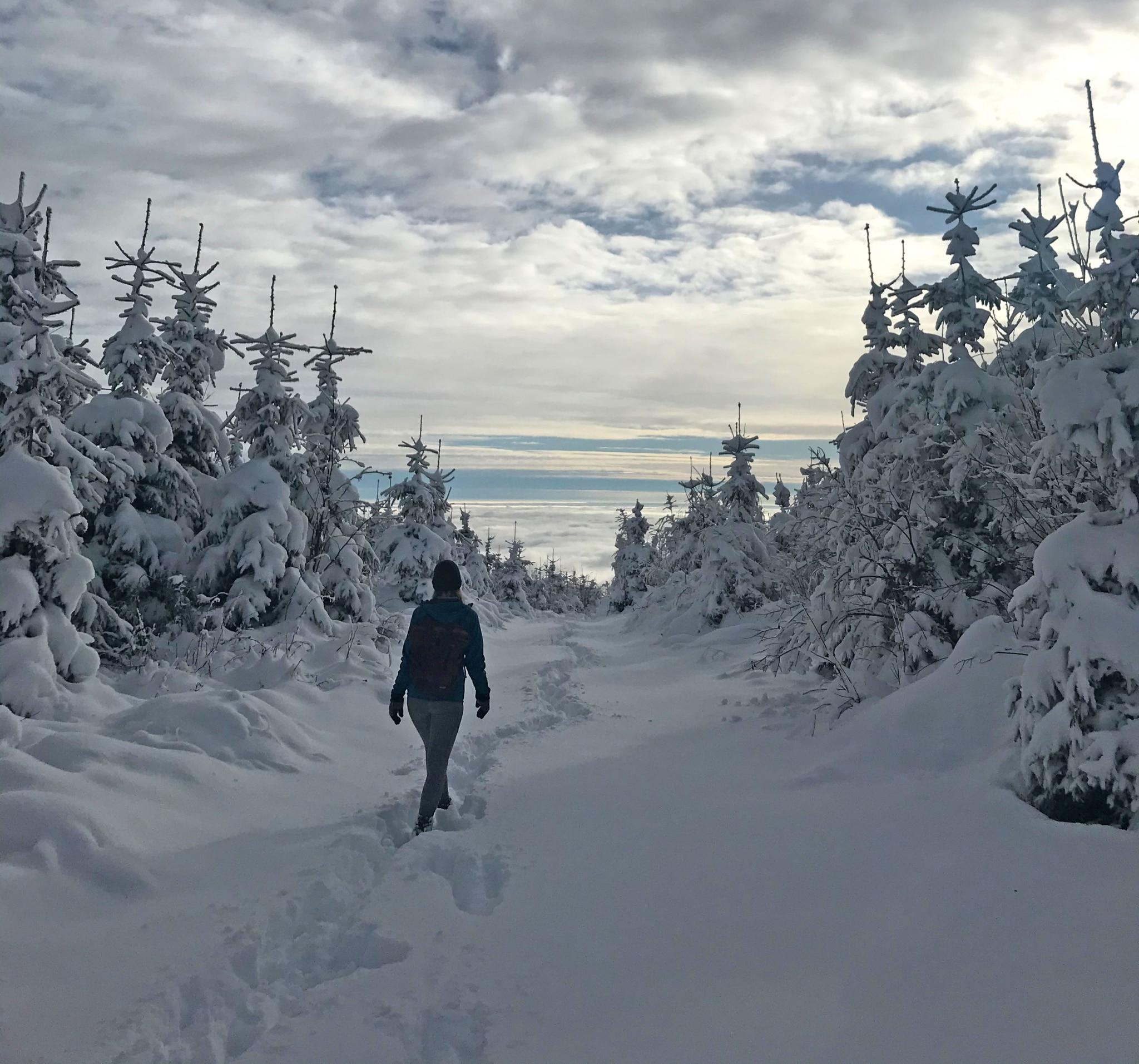 Winterwandern Gösser