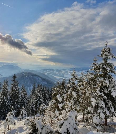 Patscha Winterwandern copyright Steininger