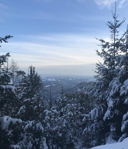Patscha Winterwandern